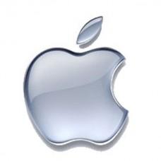 H1 метка apple>